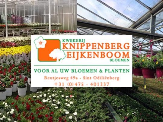 knippenberg-perkgoed